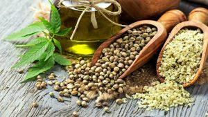 konopljina semena uporaba